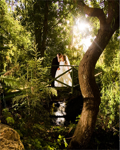 A Melbourne Wedding Photo taken in the grounds of Chateau Wyuna