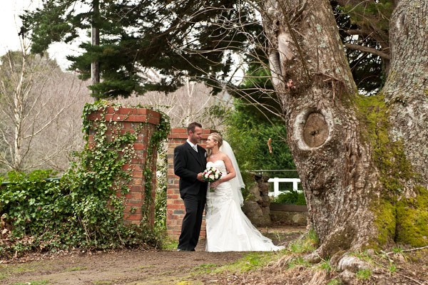 wedding photography featuring an old gate, newlyweds and giant oak tree.