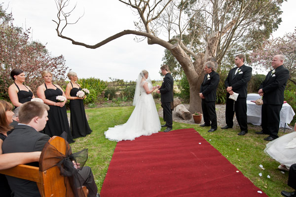 A graceful tree frames this wedding couple during their vows at Warrook farm.