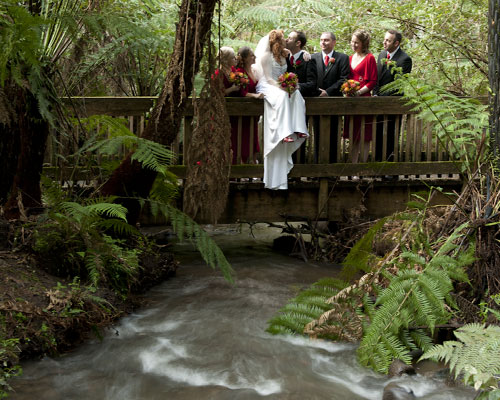 A bridal party on the bridge over the creek at Lyrebird Falls.