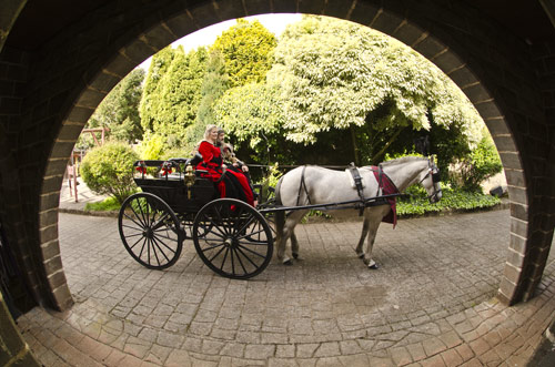 A bride and groom in a horse drawn open carriage at Kryal Castle Ballarat.