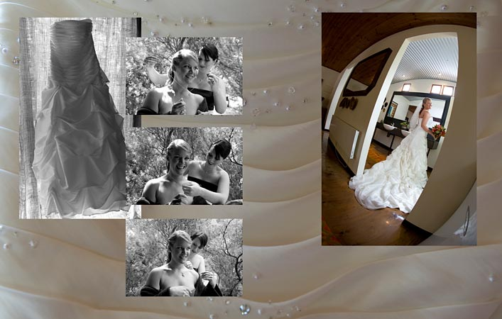 bridal gown before pier 10 winery wedding